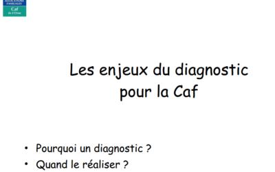Les enjeux du diagnostic pour la CAF